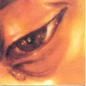 cctt penas de ubeda renacimiento y pasion 2003